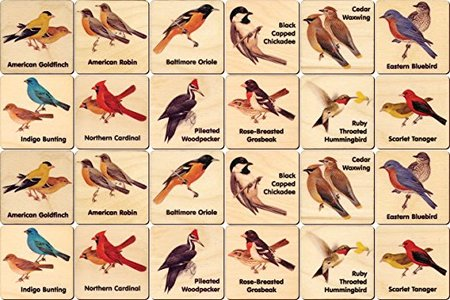 Peterson Backyard Bird Memory Tiles made in Vermont